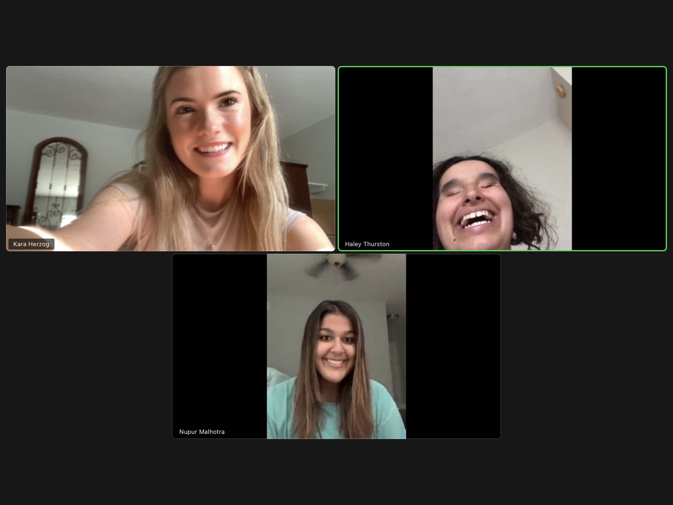 Zoom meeting with Kara, Nupur, and Haley Thurston